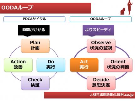 人材育成用語集2(OODAループ)